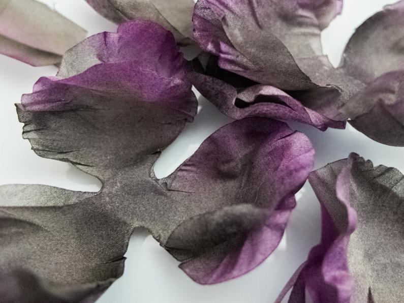 Une rose sombre et ténébreuse – Préparation