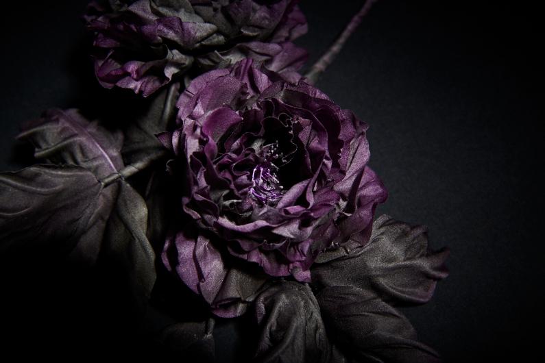 Une rose sombre et ténébreuse – Résultat