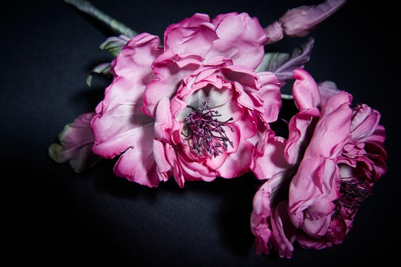 Roses pétillantes