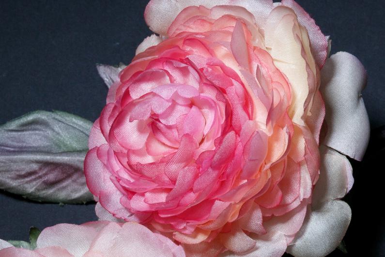 rose-6-detail-2blog