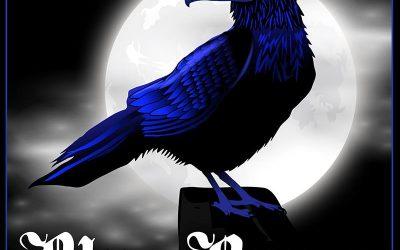 Mes créations en vente chez Blue Raven !