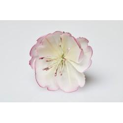 Bague Argent Ume - Rose