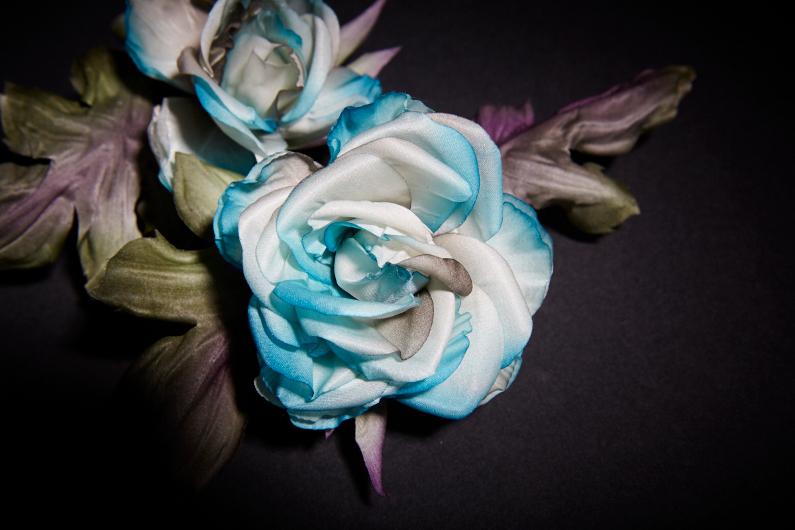 Sky blue roses – Result