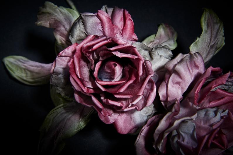 Rose enchanteresse – Un très beau résultat