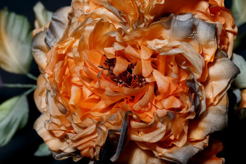 Une rose soleil – Résultat