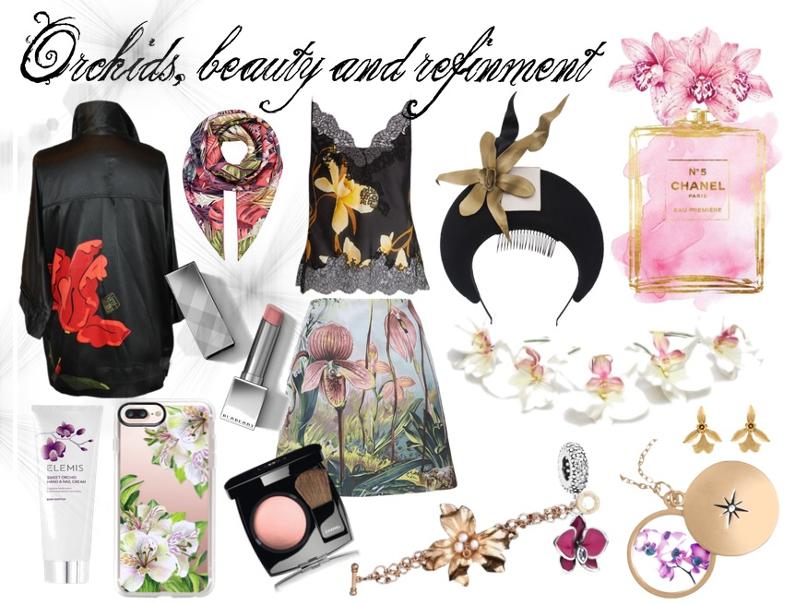 Orchidées, beauté et raffinement