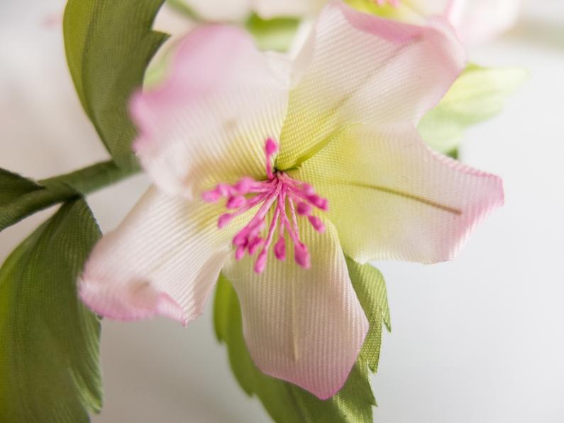 Tiny spring flowers