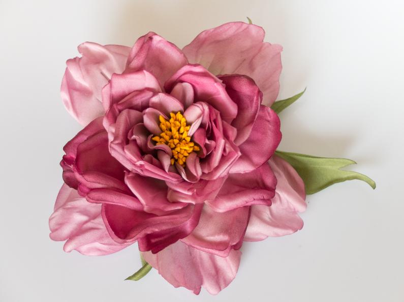 Etrange rose