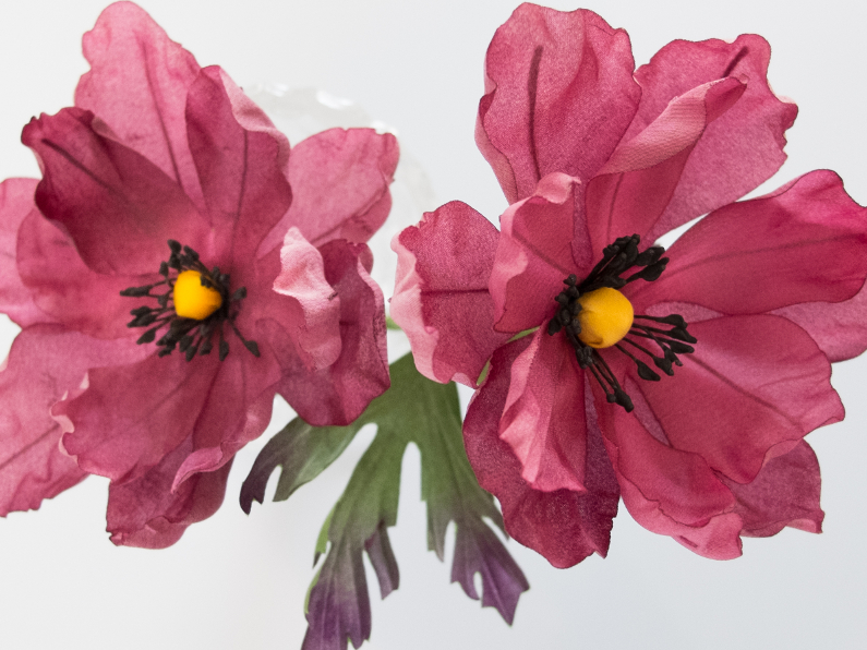 anemones en soie