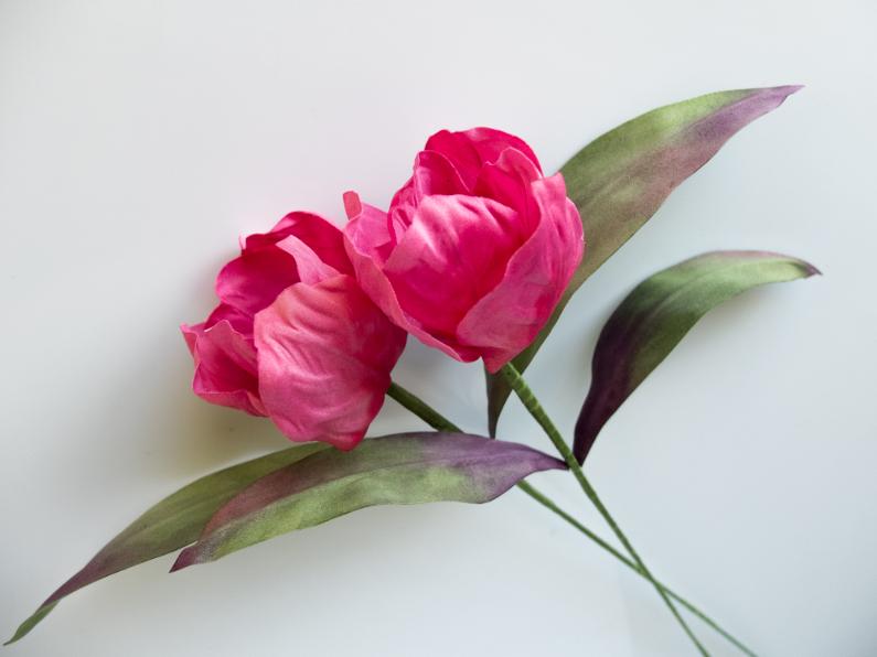 Tulipes en soie