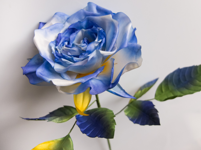 blue silk rose